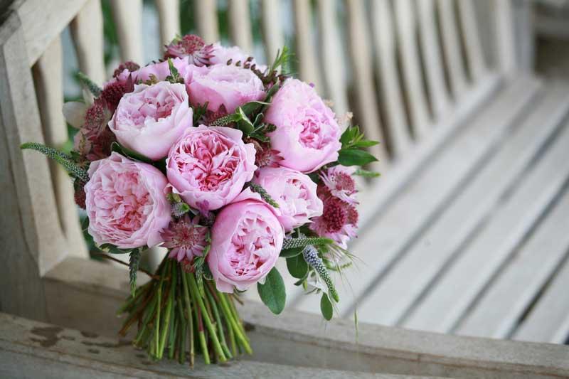 Orlando Florist roses David Austin
