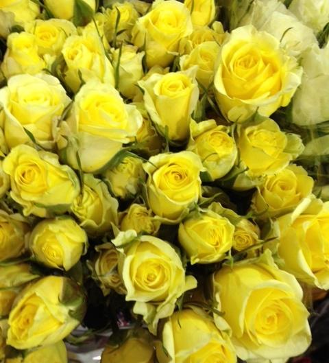 Orlando Florist spray roses yellow