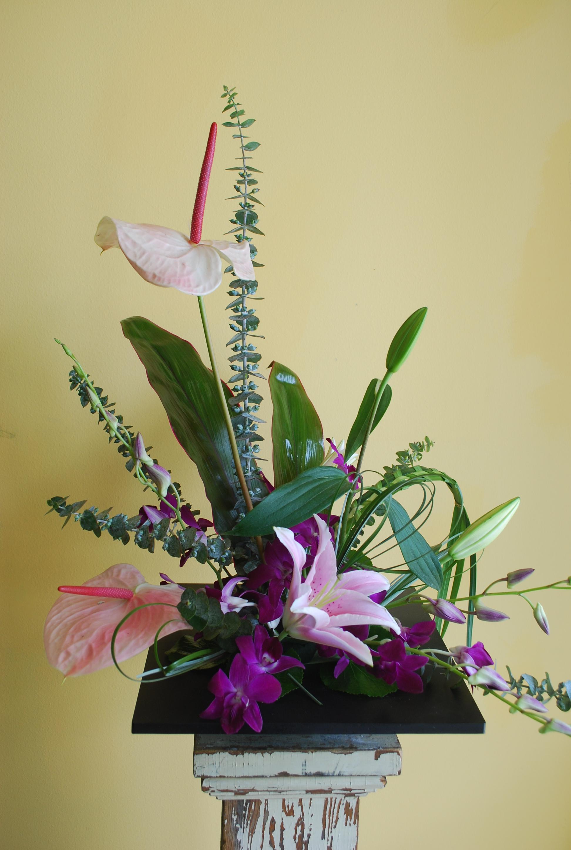 Orlando florist delivery bay hill florist orlando izmirmasajfo