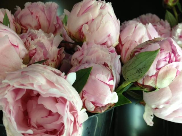 Bay Hill Florist Orlando