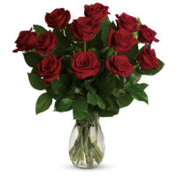 1 Dozen Red Roses in a clear glass vase