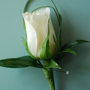 white-rose-bout