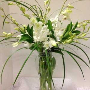 simplyorchids